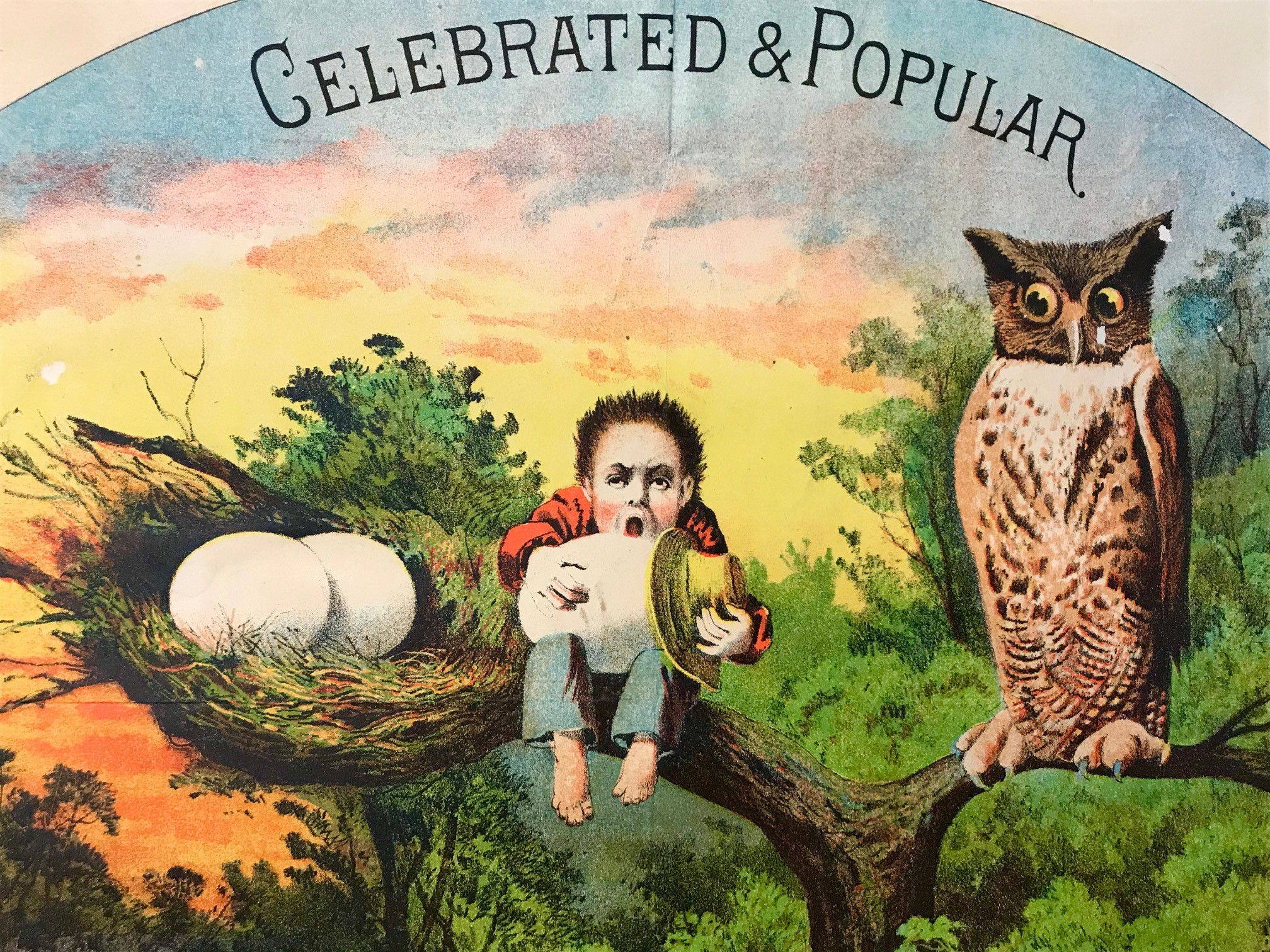 """Celebrated & Popular"" sunrise trade card, 1880s"