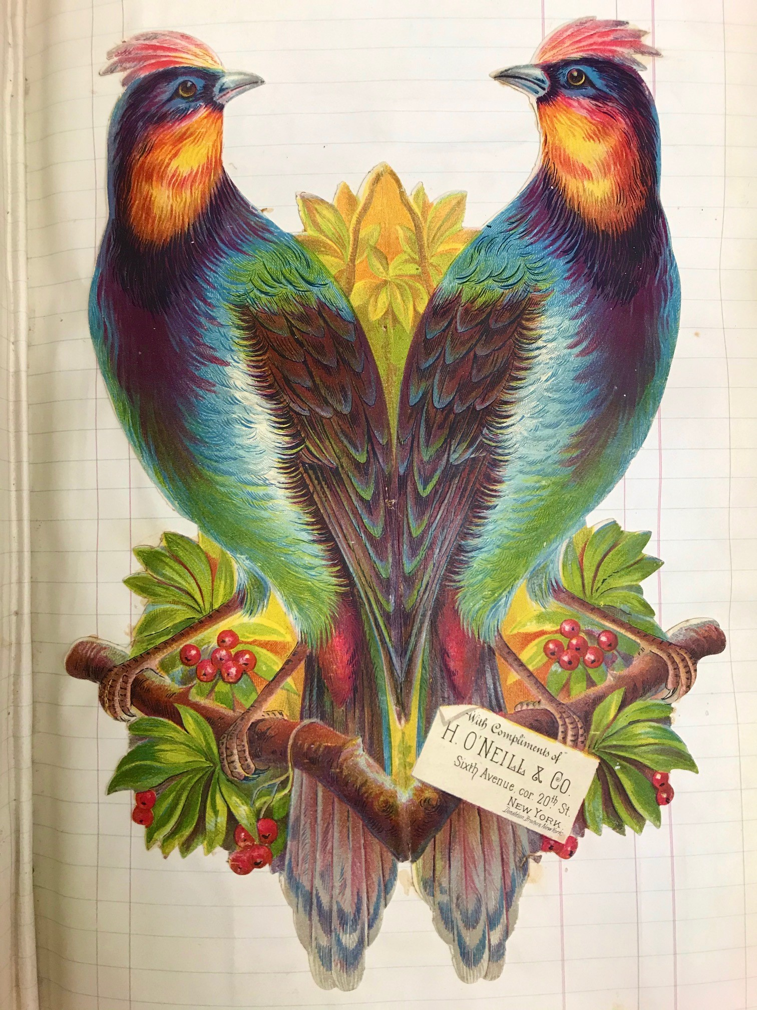 Two vibrant birds on an oversized trade card from H. O'Neill & Co., NYC, c. 1880.]